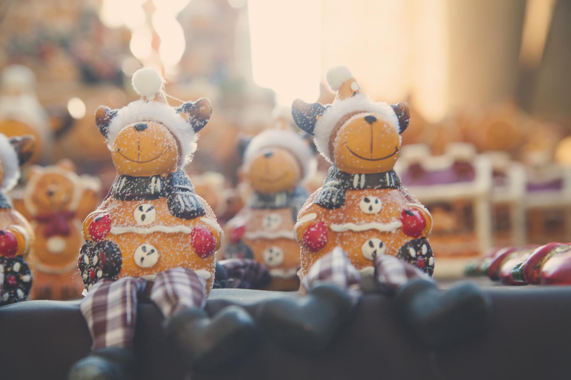 Pálmaház Karácsony - A Nagy Nyitány